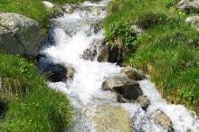 Вода живая или мертвая?