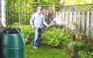 Использование дождевой воды для полива растений на участке