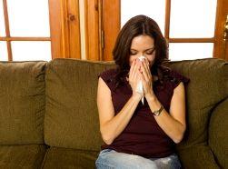 Бытовая аллергия – первые признаки и методы борьбы