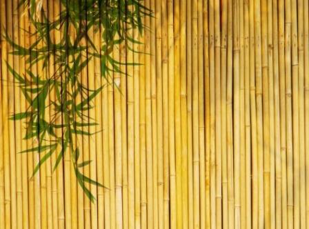 Использование бамбуковых обоев в интерьере