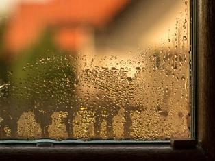конденсат на окне