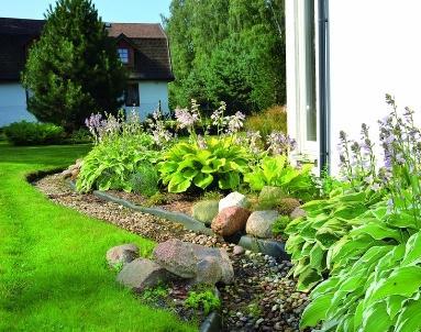 Сад во дворе дома
